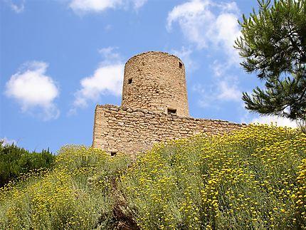 Chateau Capdepera