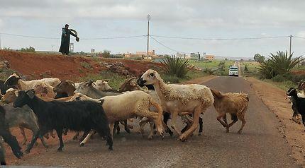 Vers Guelmim, Maroc