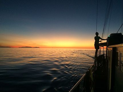 Vogons vers l'horizon