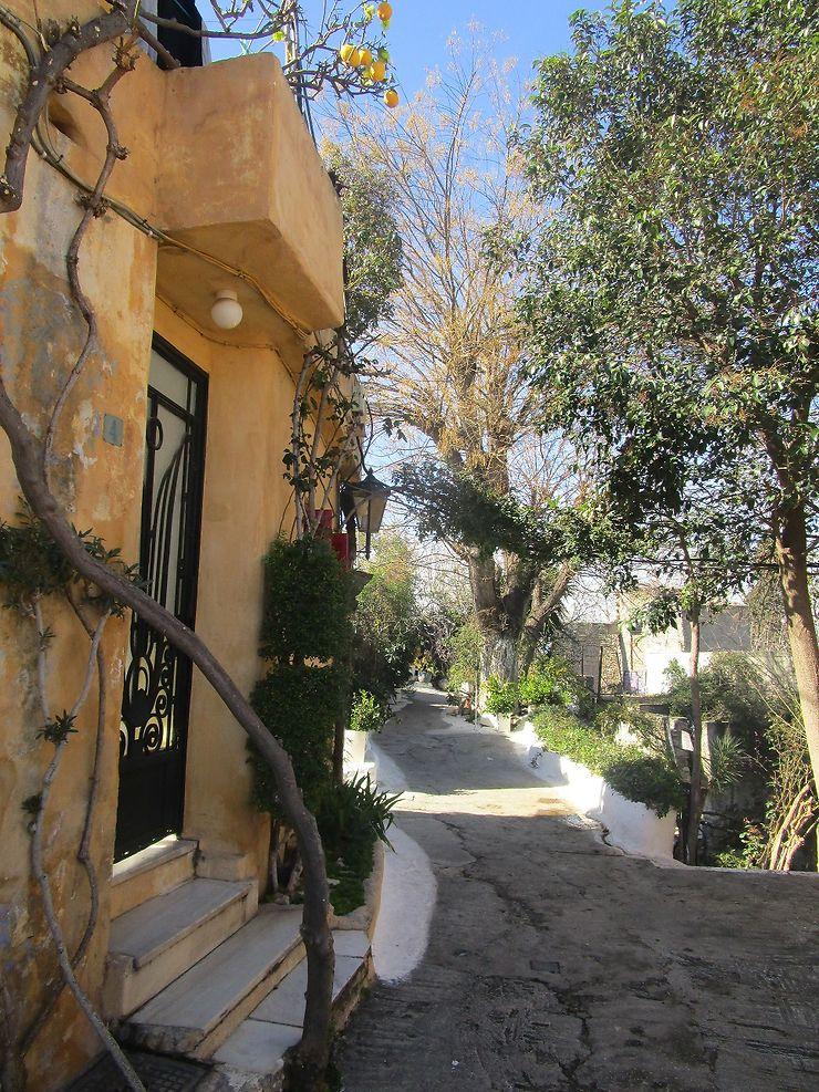 Expat Dating Athènes