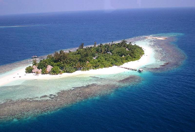 Bathala Island Resort 3*. Северный Мале Атолл снорклинг