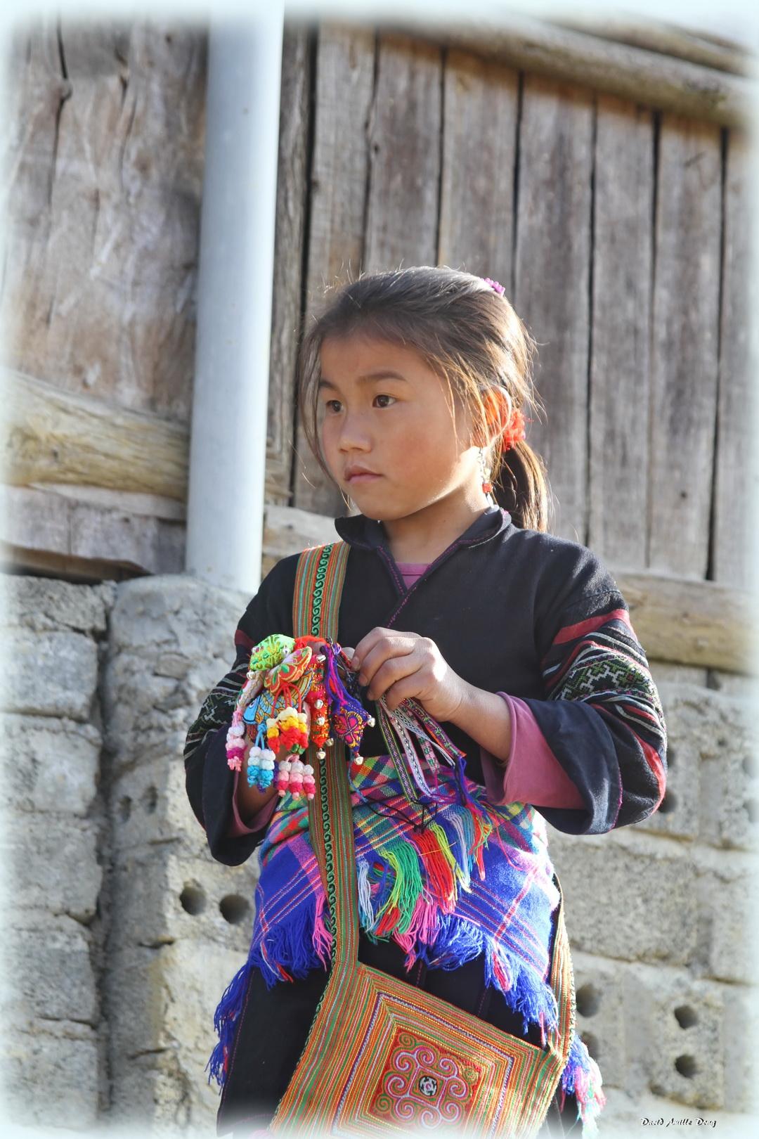 merveilles du vietnam visiteurs - david amilledong