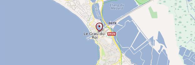 Carte Le Grau-du-Roi - Languedoc-Roussillon