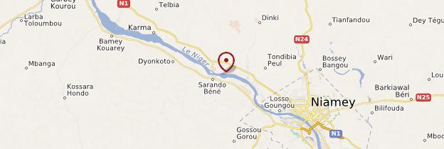 Carte Île de Boubon - Niger