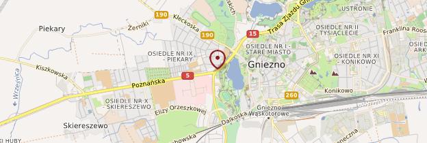 Carte Gniezno - Pologne