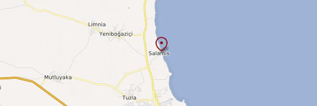 Carte Salamine - Chypre