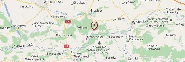 Carte Czeszewo - Pologne