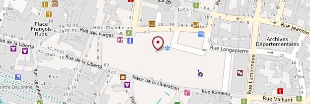 Carte Bourgogne Liberte.Palais Des Ducs De Bourgogne Dijon Guide Et Photos Bourgogne