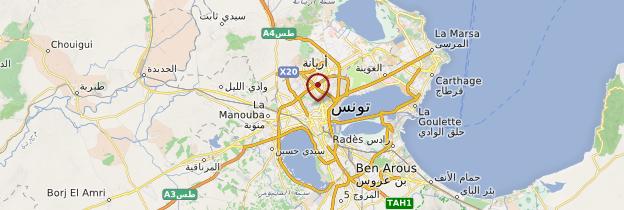 Carte Environs de Tunis - Tunisie