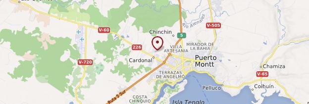 Carte Puerto Montt - Chili