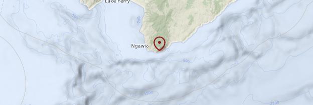 Carte Cap Palliser - Nouvelle-Zélande