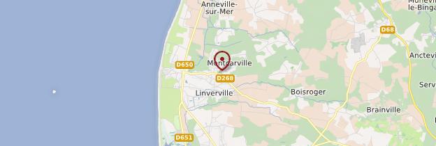 Carte Gouville-sur-Mer - Normandie