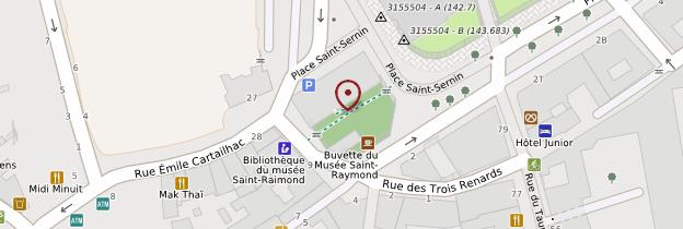 Carte Musée Saint-Raymond - Toulouse