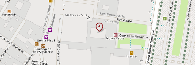 Carte Musée Fabre - Montpellier
