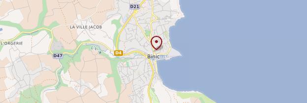 Carte Binic (Binig) - Bretagne
