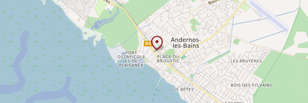 Carte Andernos-les-Bains - Aquitaine - Bordelais, Landes
