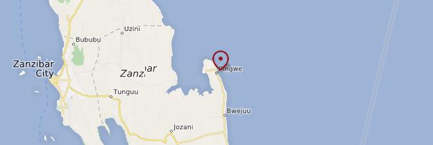 Carte Pingwe - Zanzibar