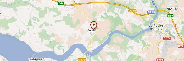 Carte Arzal - Bretagne