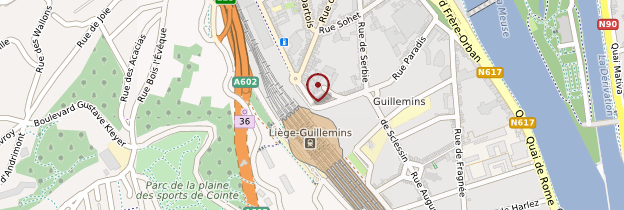 Carte Gare de Liège-Guillemins - Belgique