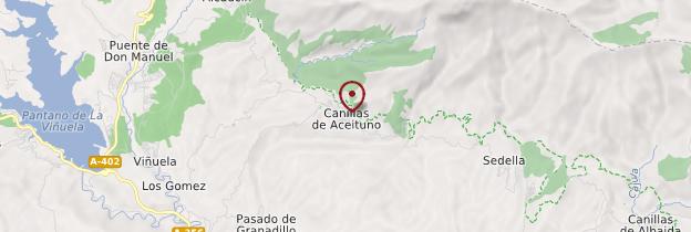 Carte Canillas de Aceituno - Andalousie