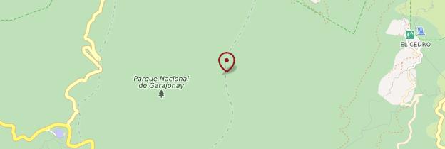 Carte Parc national de Garajonay - Canaries