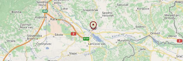 Carte Gare de Ptuj - Slovénie