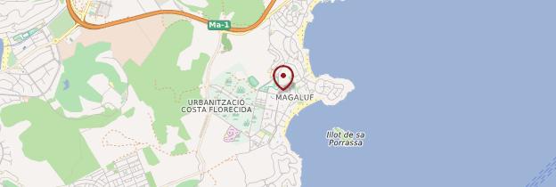 Carte Magaluf - Majorque