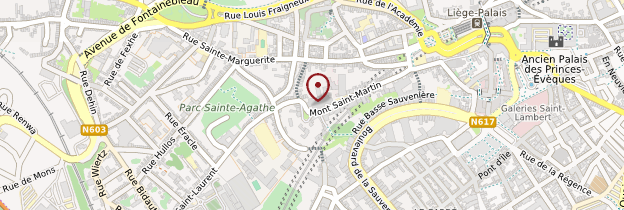 Carte Basilique Saint-Martin - Belgique