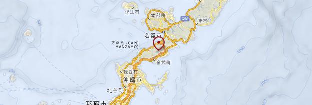 Carte Île Okinawa - Japon
